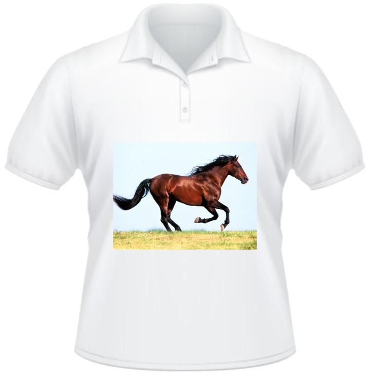 polo shirt with full color print tshirt printing